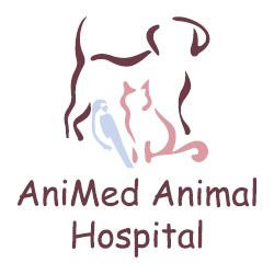 AniMed Animal Hospital