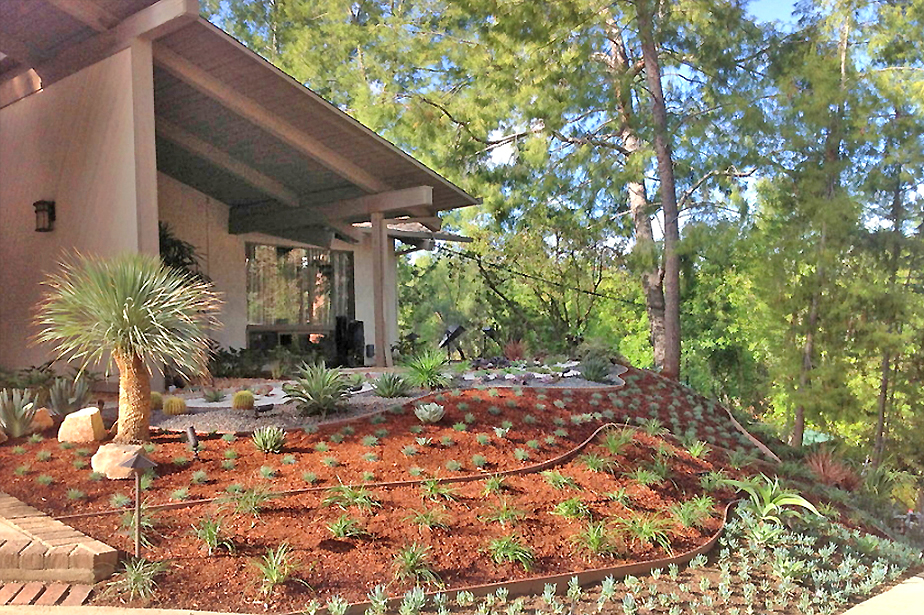 Flores Landscaping image 74