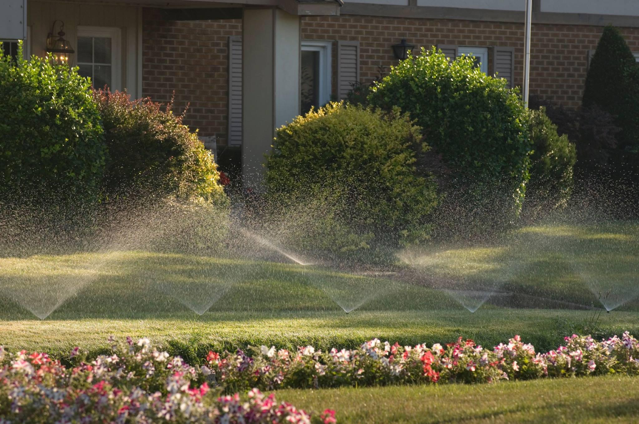 Impressive Irrigation and Landscape Inc image 6