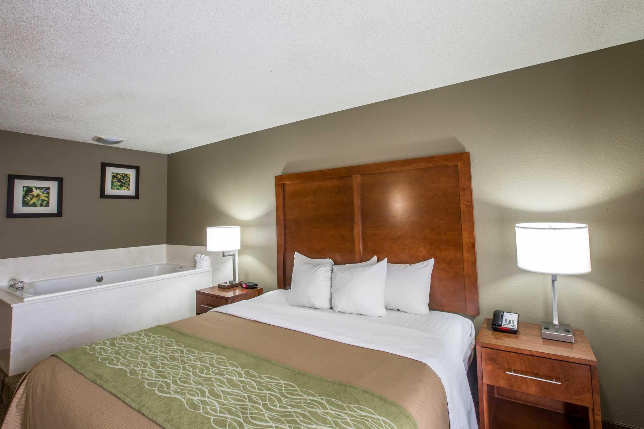 Comfort Inn & Suites at Dollywood Lane image 25
