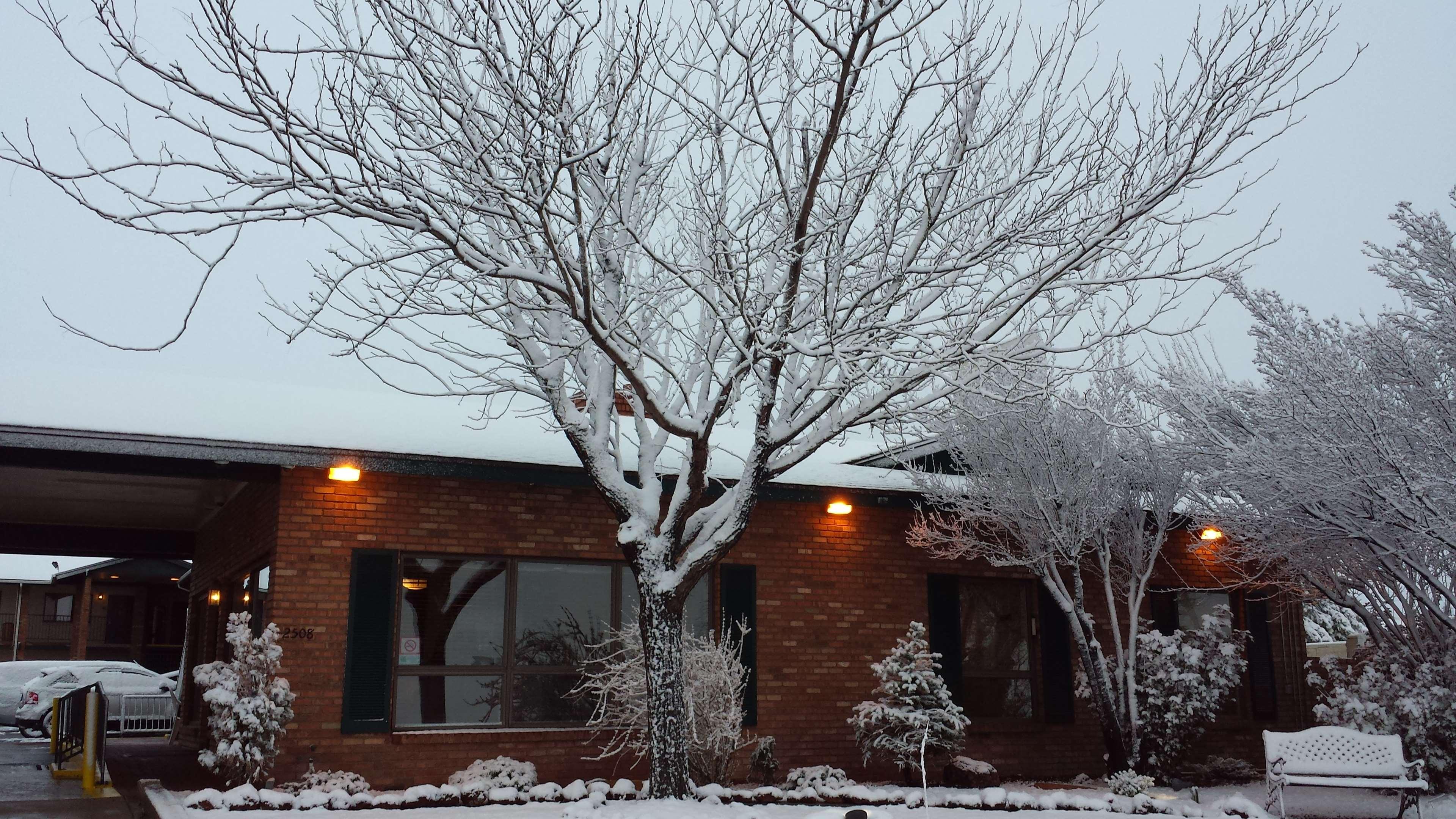 Best Western Arizonian Inn image 8