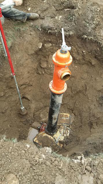 Plumbing & Drain Professionals image 1