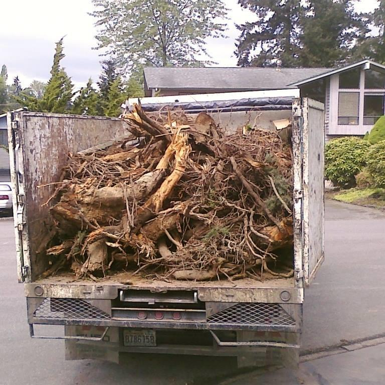 Green Junk Removal and Hauling Services