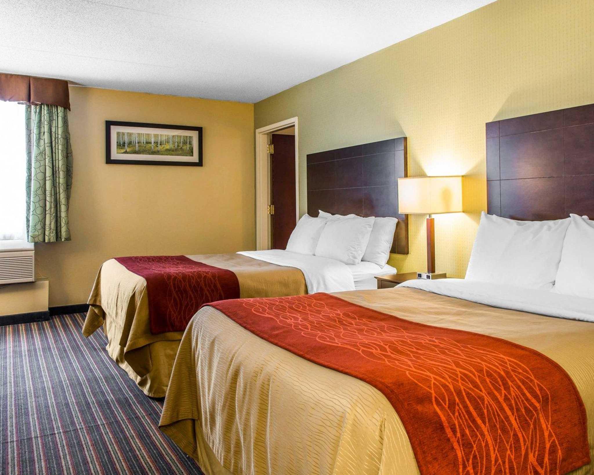 Comfort Inn & Suites East Hartford - Hartford image 16