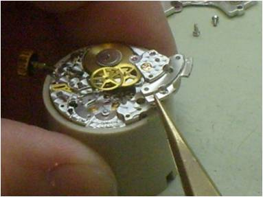 The Swiss Watch Service Group,Inc. image 2