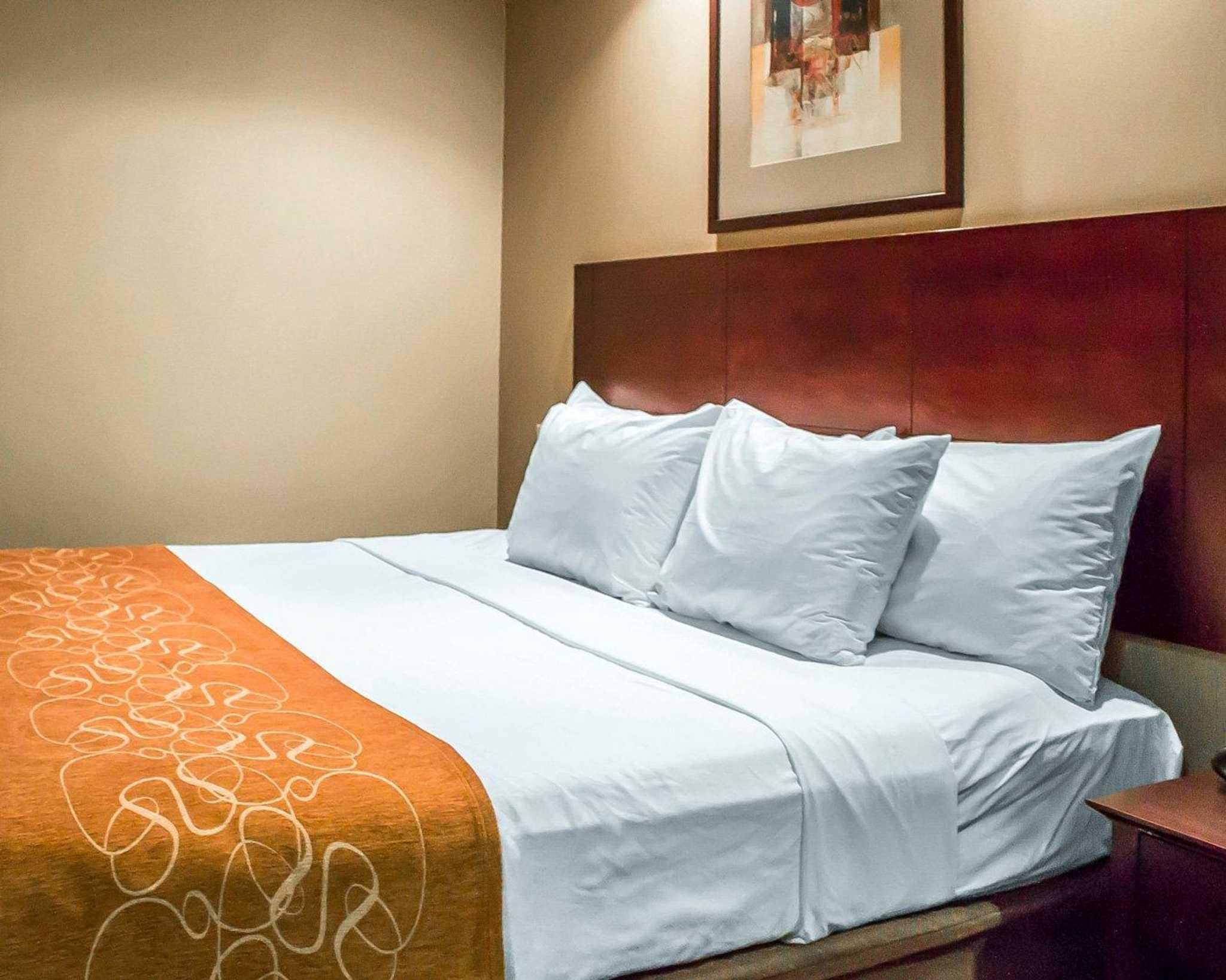 Comfort Suites Perrysburg - Toledo South image 2