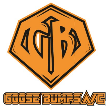 Goose Bumps Air Conditioning
