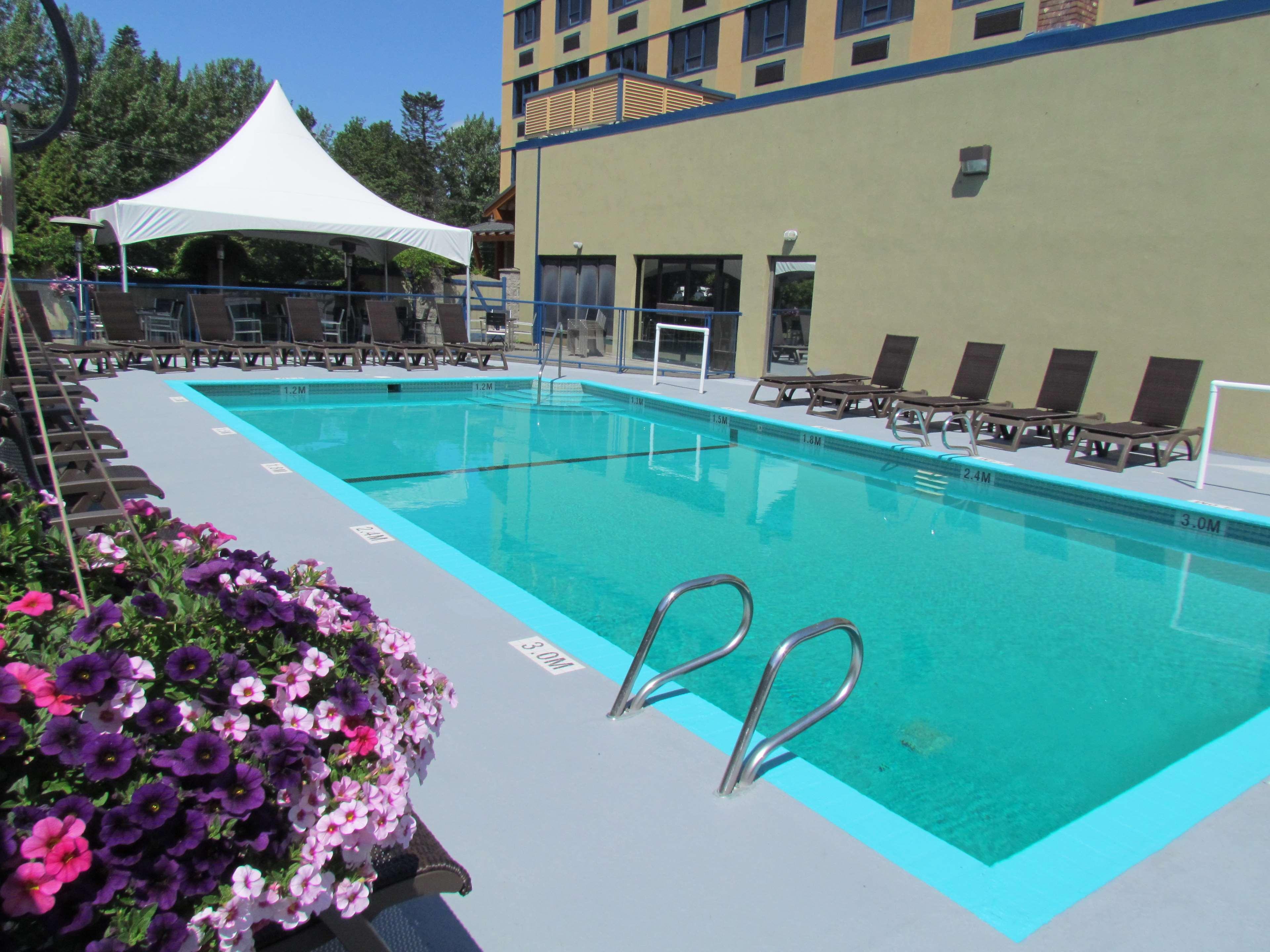 Best Western Plus Barclay Hotel in Port Alberni: Enjoy our heated outdoor pool.