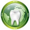 Holistic Dental Center