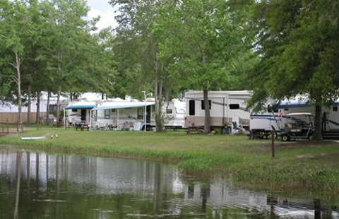 Starke / Gainesville N.E. KOA image 3