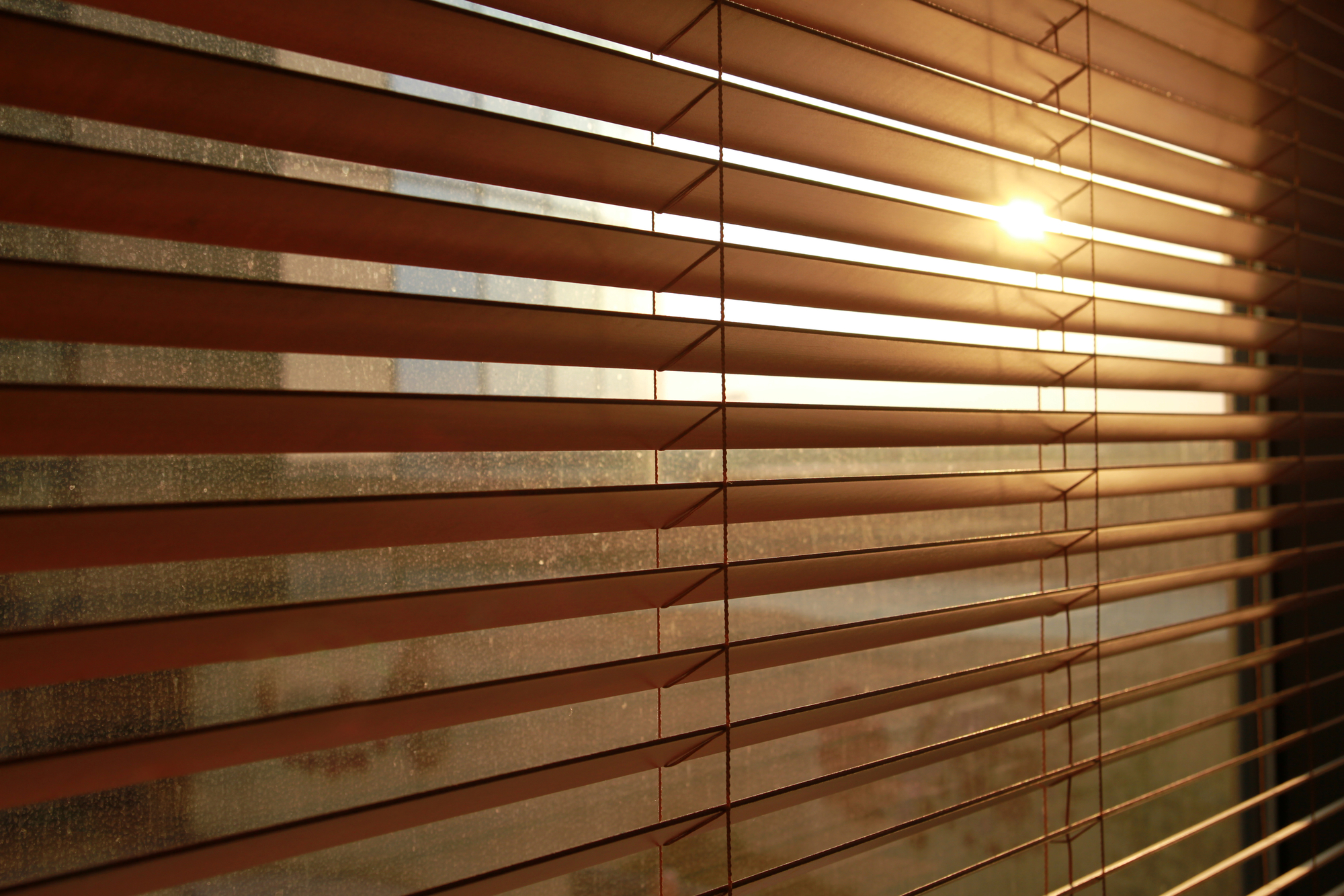 The Frog Blinds Shutters Drapes image 0