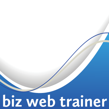 biz web trainer