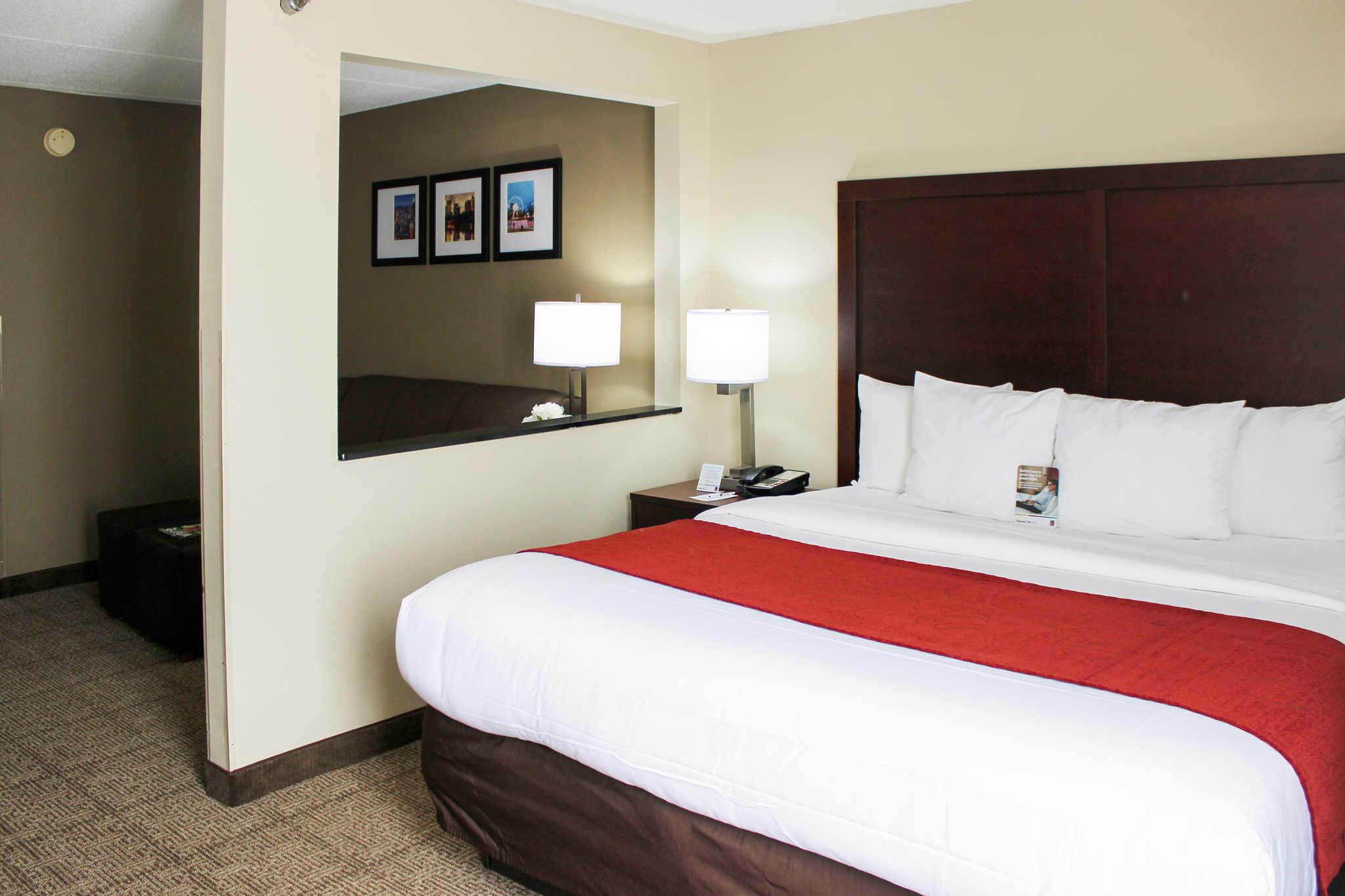 Comfort Suites Northlake image 3