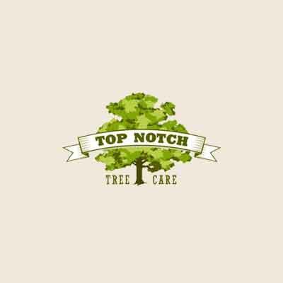 Top Notch Tree Care image 0