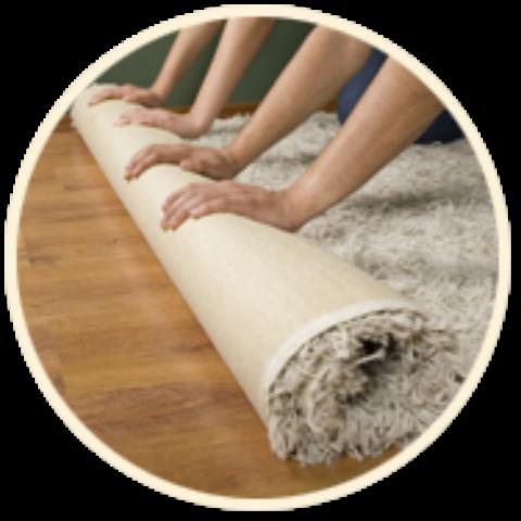 JTM PRO Carpet image 3
