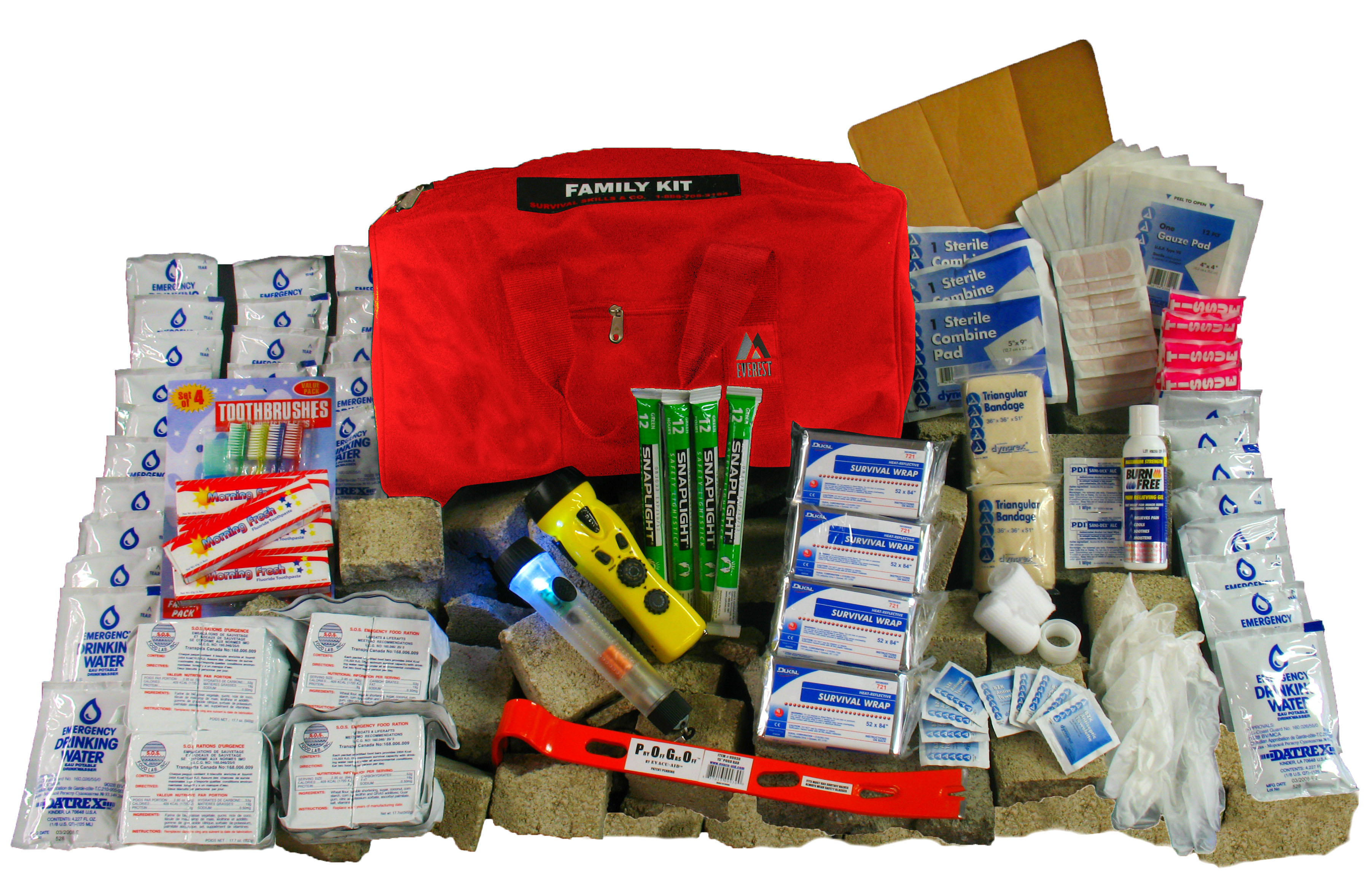 Disaster Survival Skills, LLC - ad image
