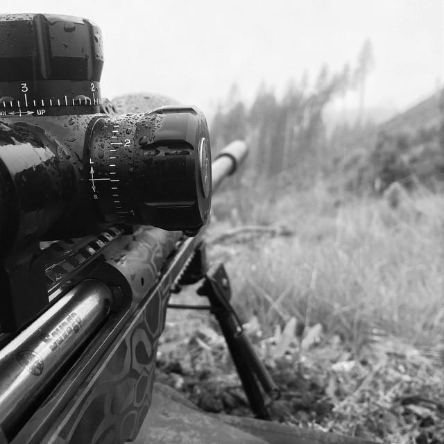 Brimstone Gunsmithing image 1