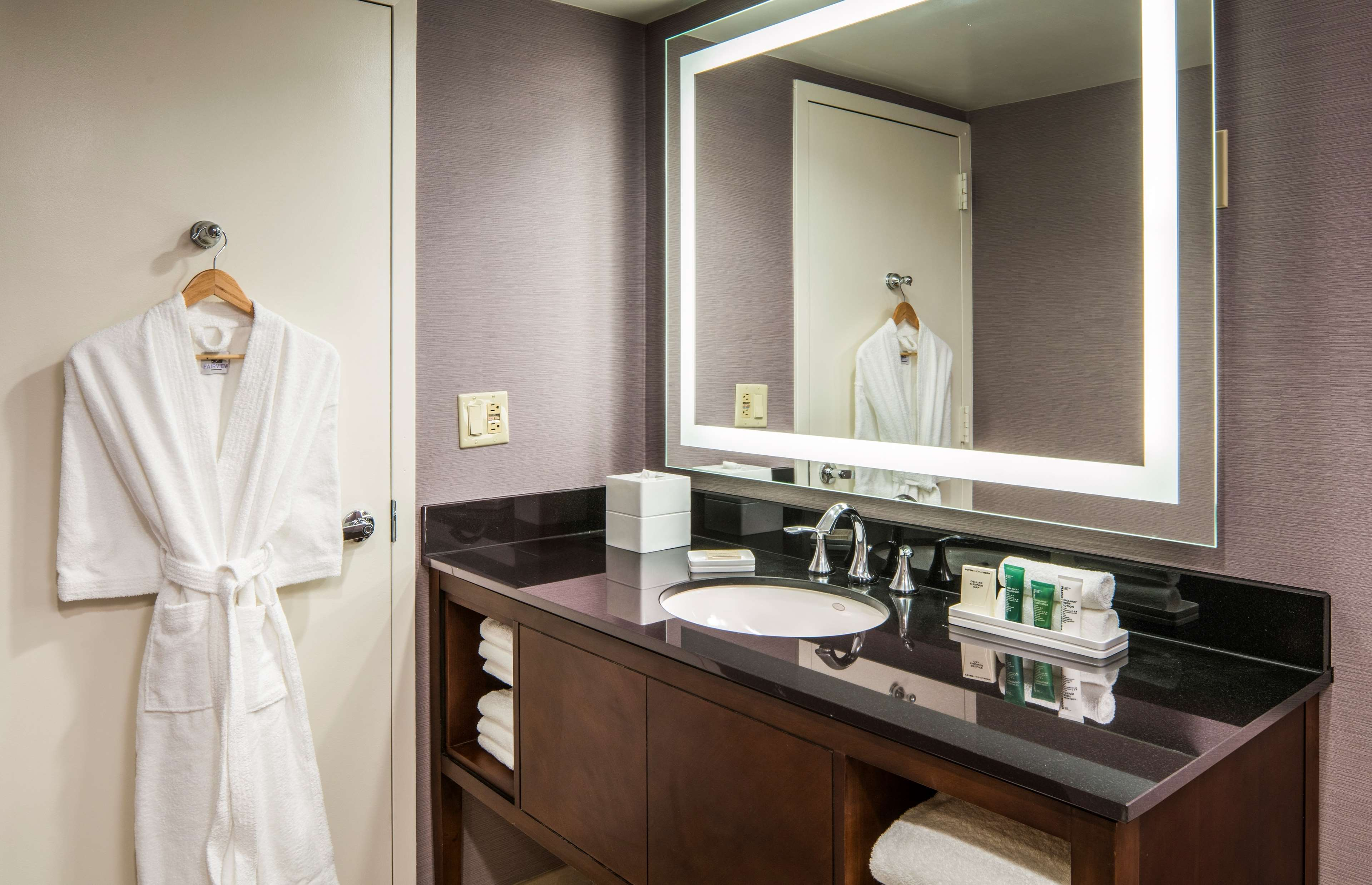 Hilton Washington DC/Rockville Hotel & Executive Meeting Ctr image 42