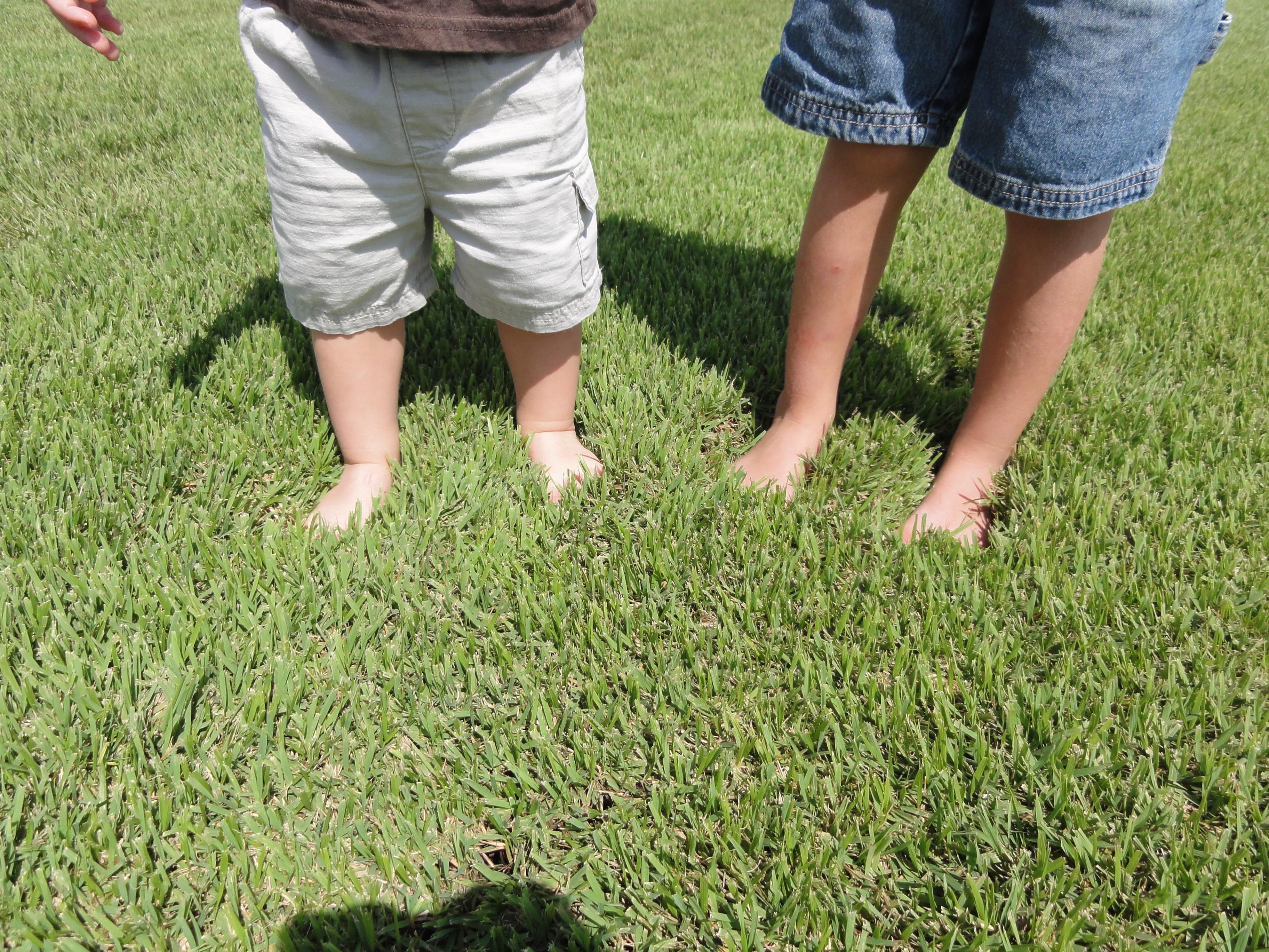 Houston Grass South image 3