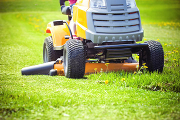Mad Mower Lawn Care Services, LLC