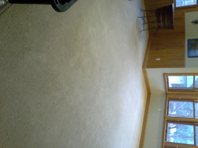 Barany Residential & Commercial Cleaning image 0