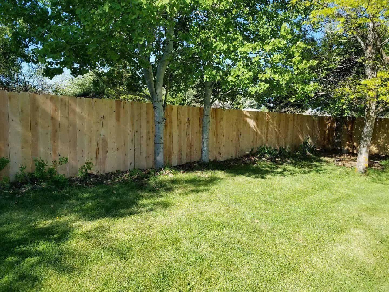 Bully Fence image 6