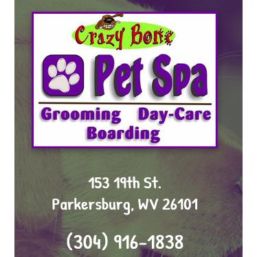 Crazy Bone Pet Spa image 0