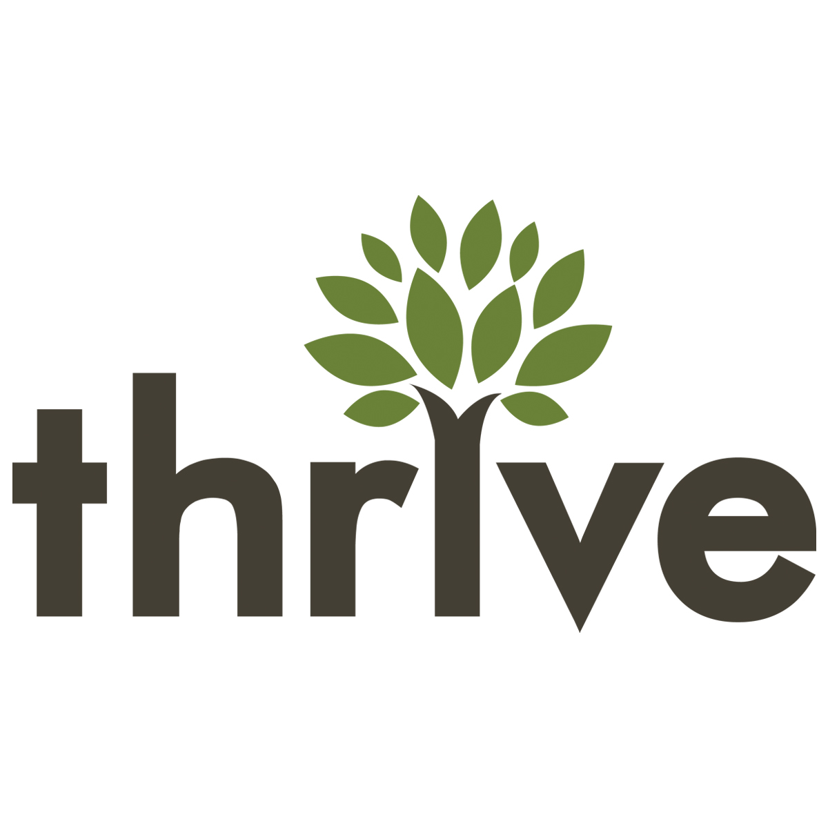 Thrive Internet Marketing Agency image 3