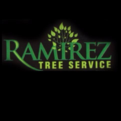 Ramirez Tree Service image 5