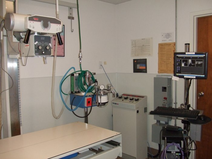 VCA All Pets Animal Hospital Salinas image 1