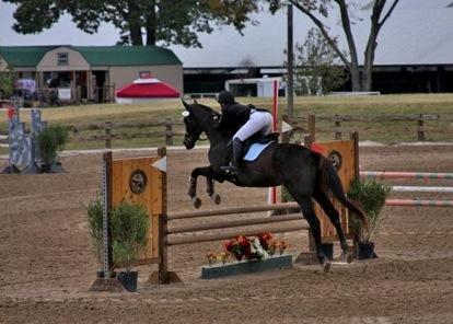 Salem Equestrian Center image 5