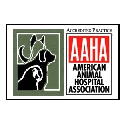 The Animal Hospital on Mt Lookout Square - Cincinnati, OH 45208 - (513) 871-8866 | ShowMeLocal.com