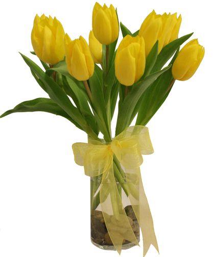 Freytag's Florist