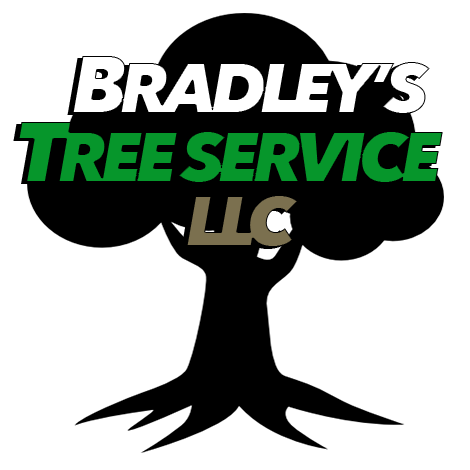Bradley's Tree Service LLC