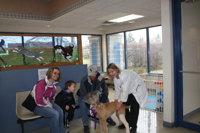 VCA Worth Animal Hospital in Palos Hills, IL, photo #4