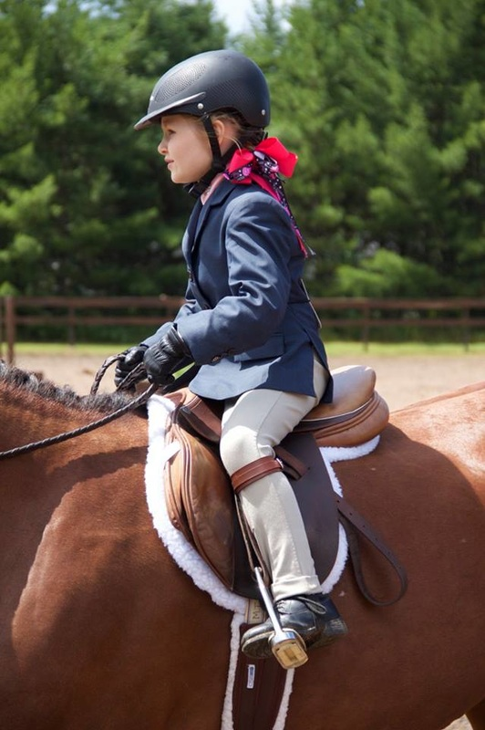 Pineridge Equestrian Center, LLC image 5