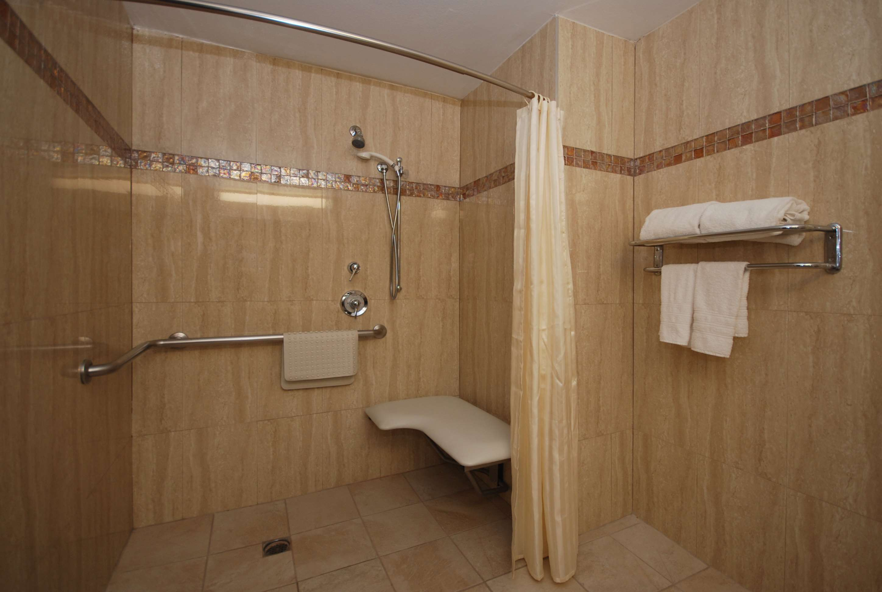 Mobility Accessible Shower