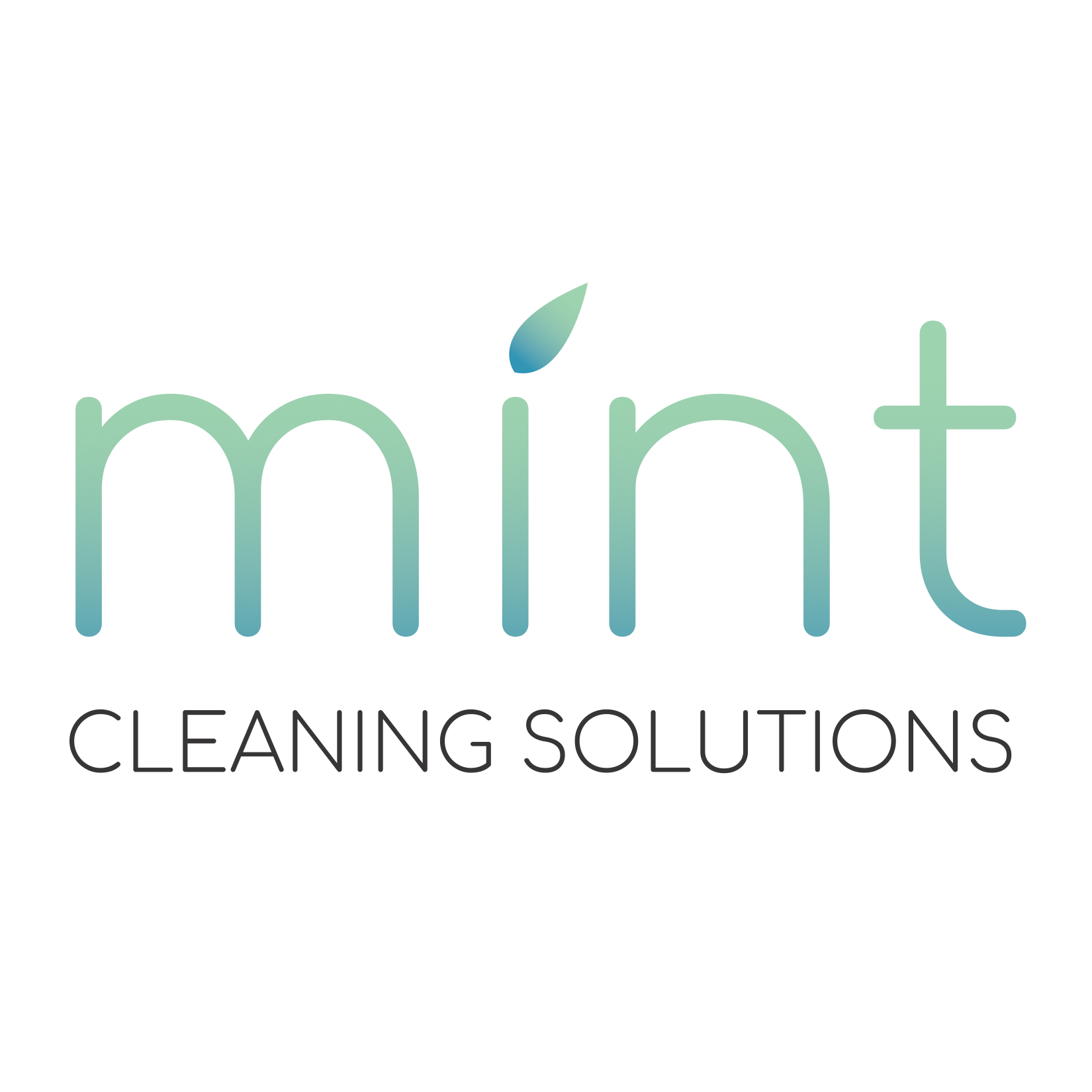 Mint Cleaning Solutions