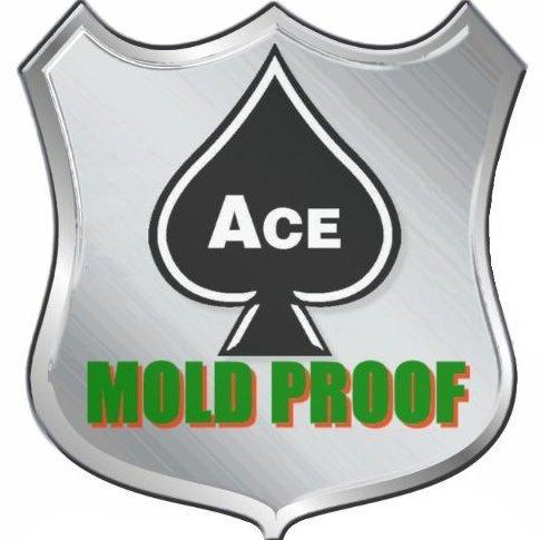 Ace Mold Proof image 0