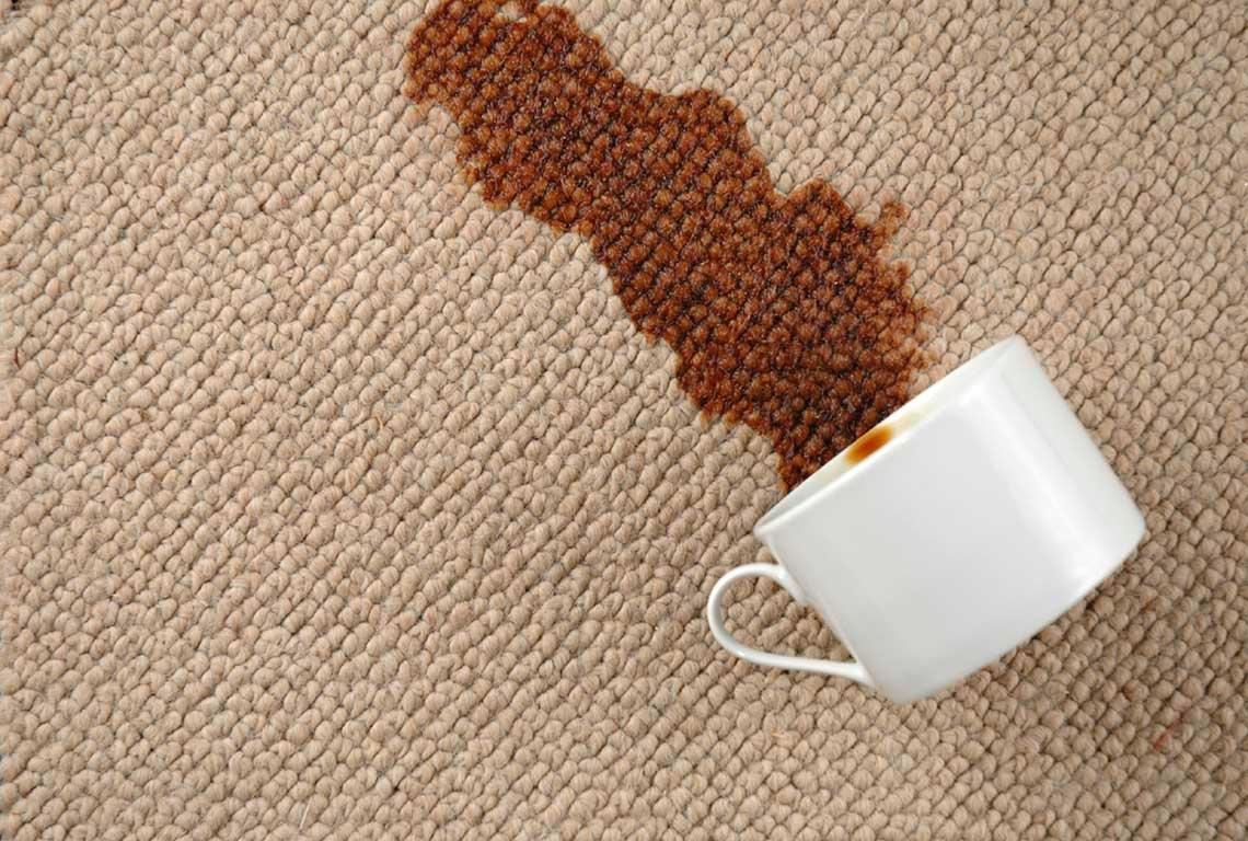 Wow My Carpets Are Clean image 3