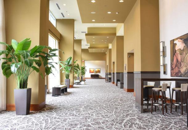 Raleigh Marriott City Center image 23
