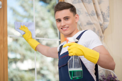 Nothing But Clean Window Cleaning image 6