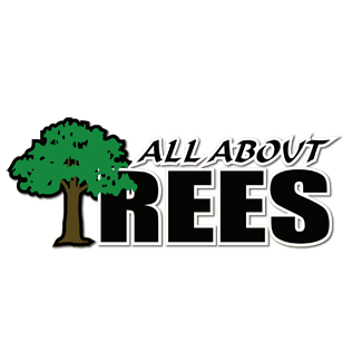 All About Trees image 0