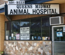 Queens Midway Animal Hospital in Flushing, NY, photo #9