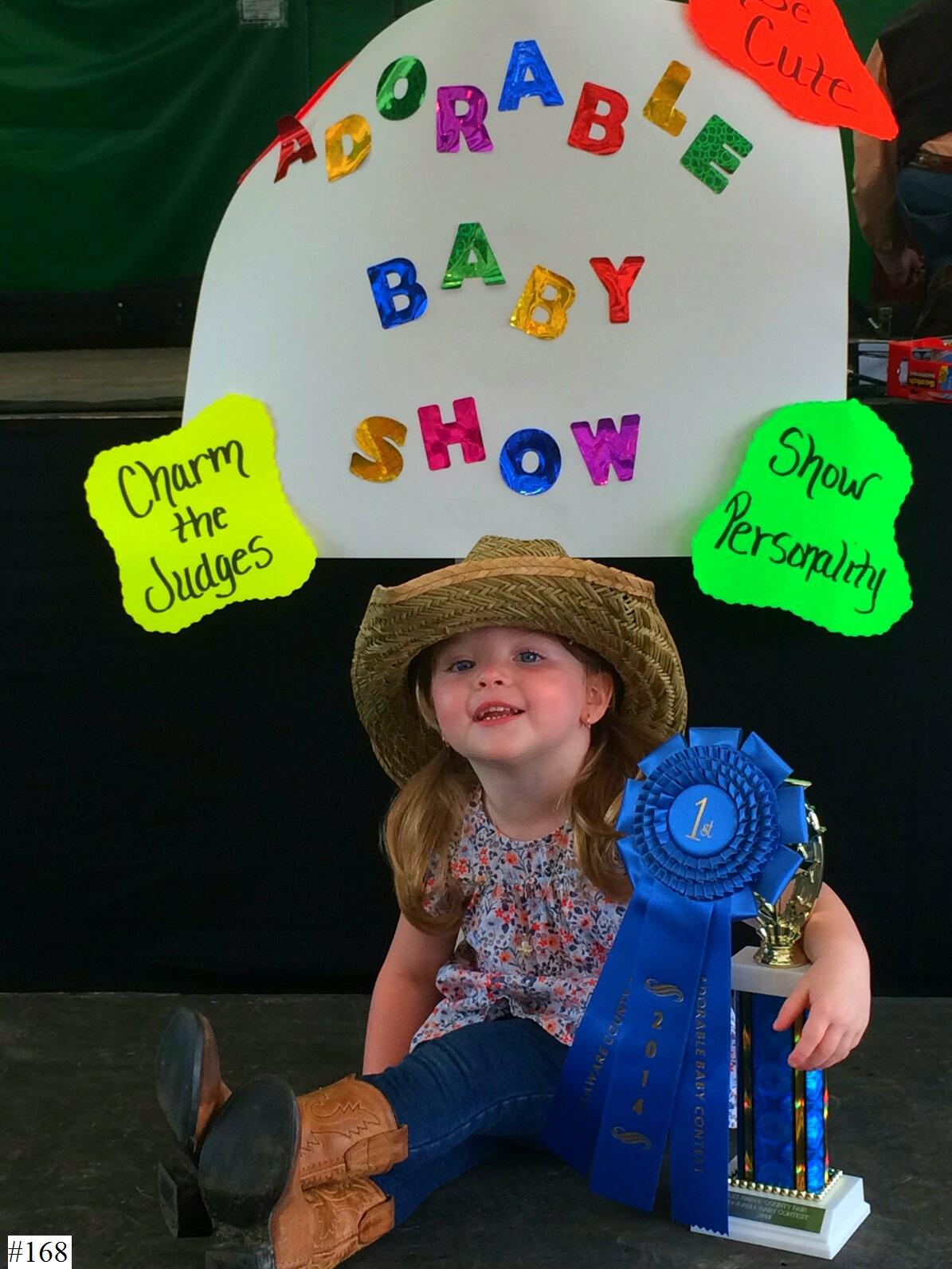 Delaware County Fair image 7