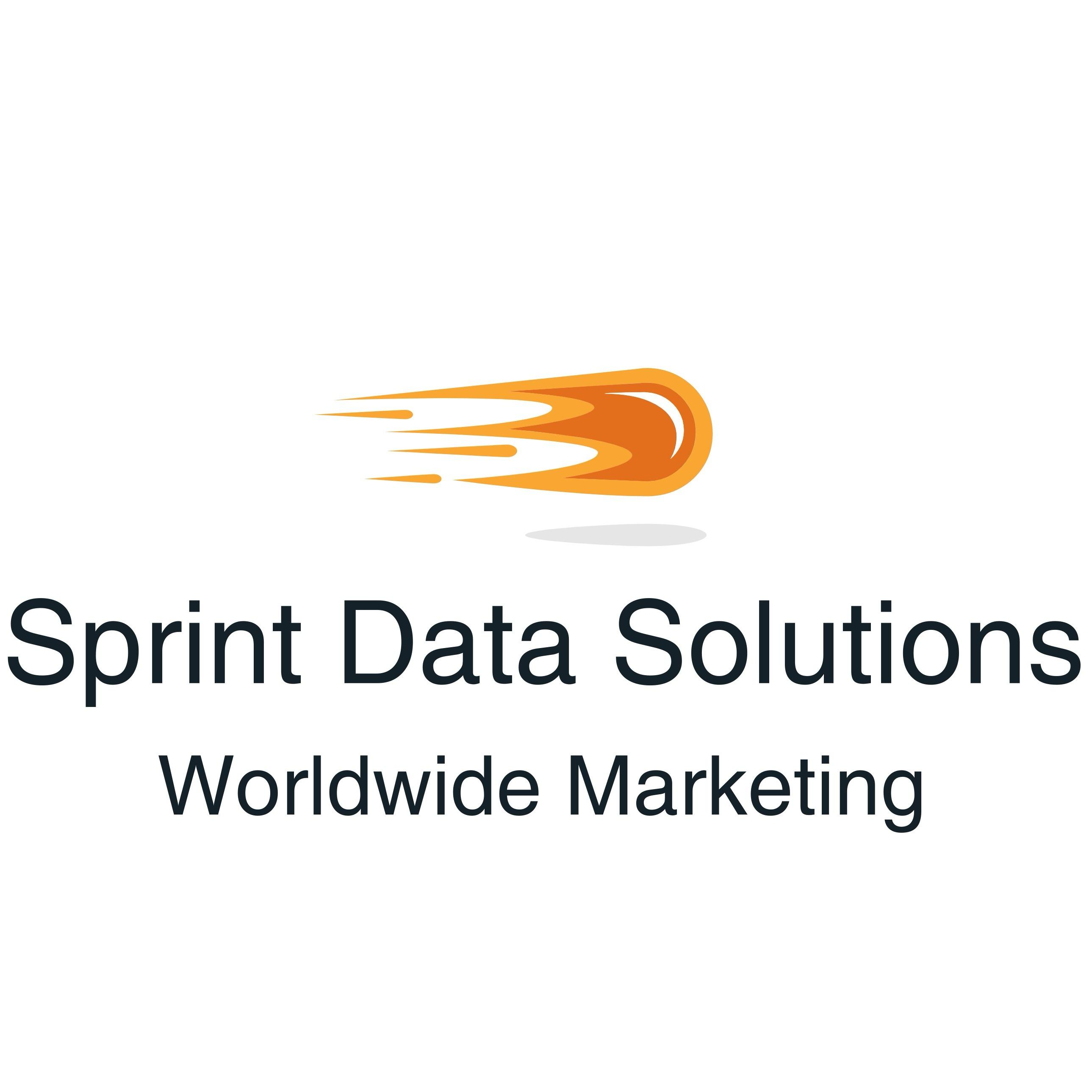 Sprint Data Solutions Worldwide Marketing