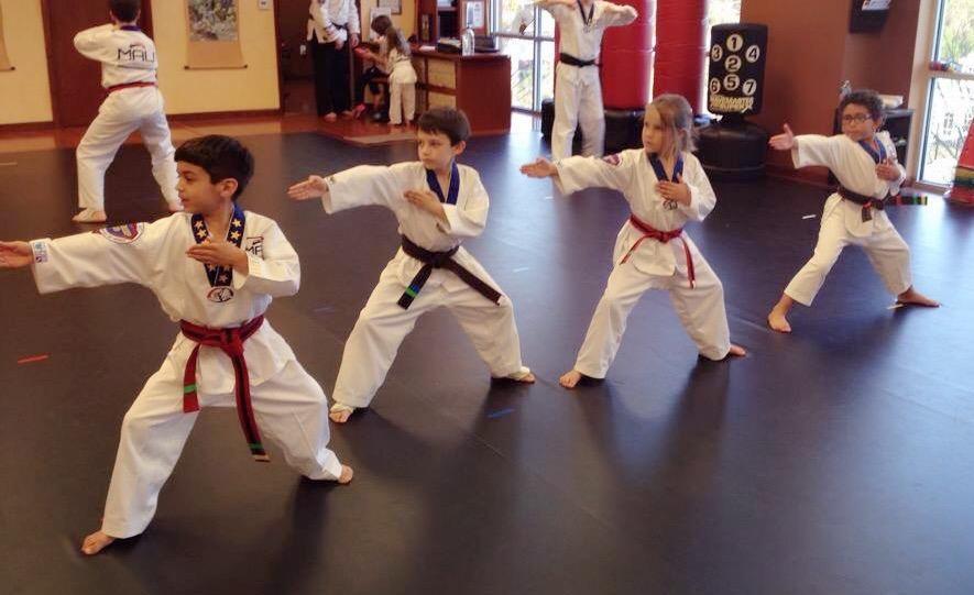 Martial Arts University image 7