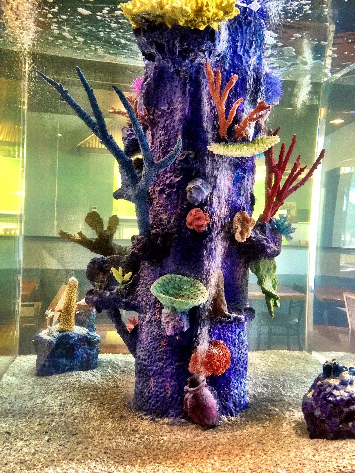 Sea Clear Aquarium Inc.