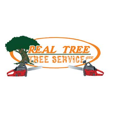 Real Tree-Tree Service