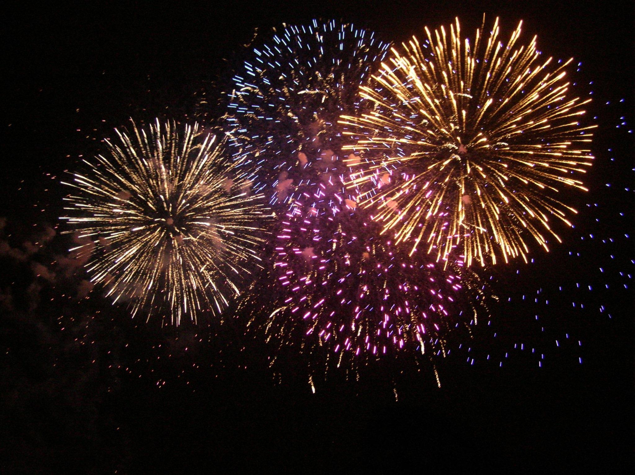 King Bird Fireworks image 7